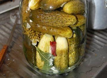 Рецепт консервации огурцов
