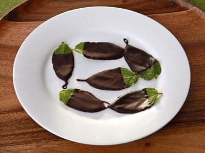 Подавайте листики из мяты и шоколада охлажденными