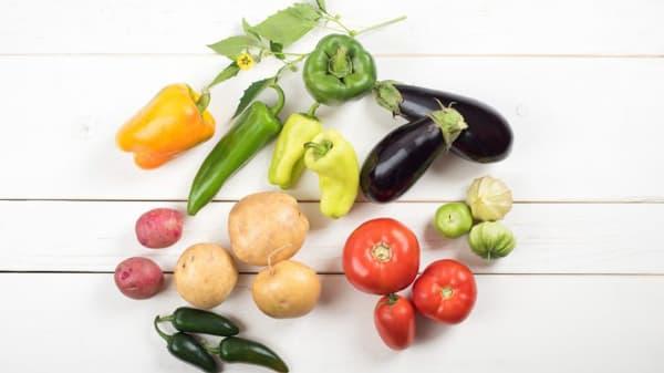Плоды растений семейства Паслёновых